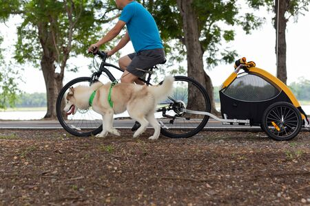 Owner with Cargo bike taking dog exercise in the park. Standard-Bild