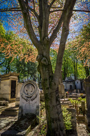 resuscitate: Tombstone in a cemetery in the autumn