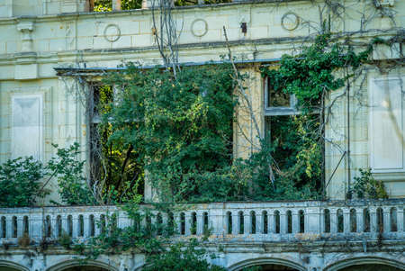 Vegetation in ruins, nature takes its right back Archivio Fotografico