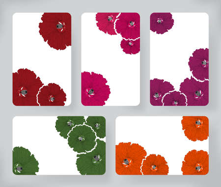 topical: Set of hibiscus flowers and Brochures. Vector Design Templates Collection for Banners, Flyers, Card , Placards and Posters backgrounds.
