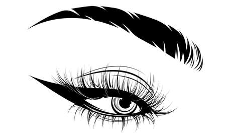 illustration of eye makeup and brow on white background