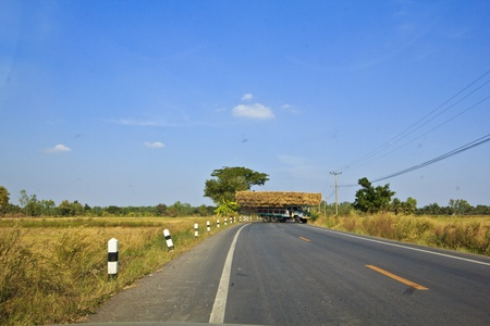 Moving with dry straw in the Northeast of Thailand Stock Photo - 16905456