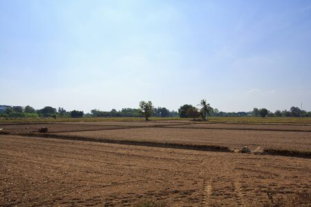 peasantry: Preparation of farmland