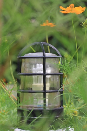 lamp in garden with leaves covered  photo