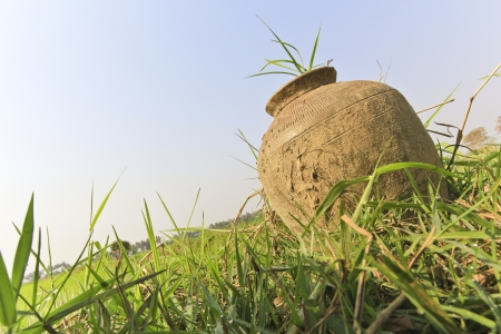planter pot on a field  Stock Photo