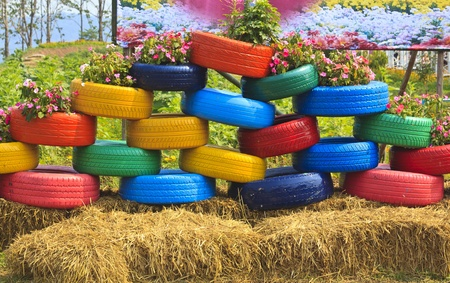 floral flower bed of old automobile tires  Stock Photo