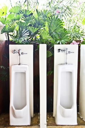 Two urinals with a  tree background  photo