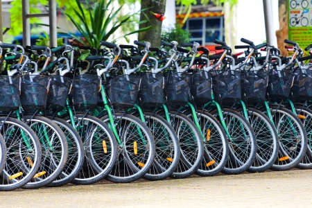 Row of parked greenl bicycles Stock Photo