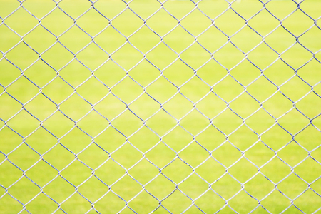 Wire Mesh Fence Close-Up on Green Background  photo