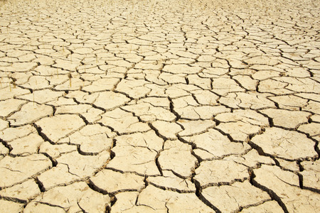 dry soil texture background. photo