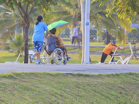 garden staff: Woman pushing senior patient on wheelchair outdoors for exercise. Editorial