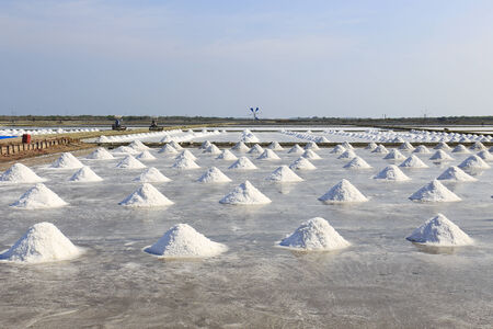 pile of salt in the salt pan at rural area of Thailand. photo
