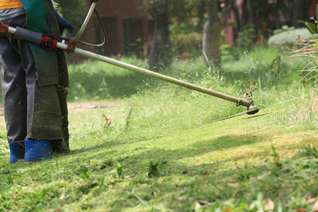 grass cutting: lawn mower worker cutting grass in green field.