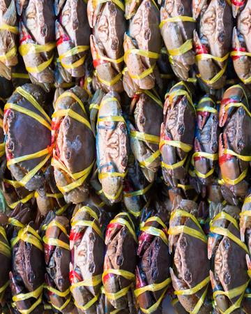 Live Crabs ready to be cooked in a market.