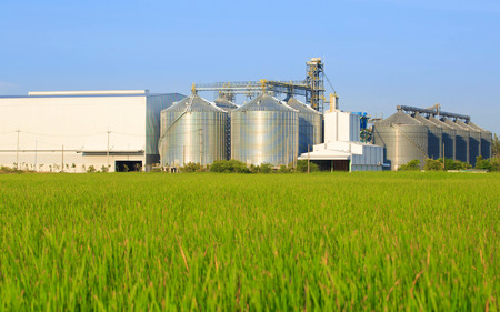 rice mill: Plant large white Located with green field Stock Photo