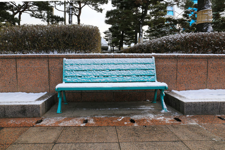 Park bench and trees covered by  snow. photo