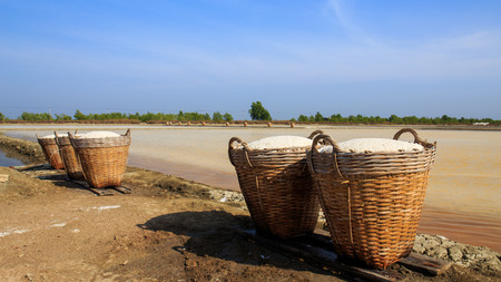 briny: Sea salt in the bamboo basket on salt farm.. Stock Photo
