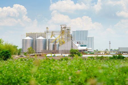 agriculture landscape: Agricultural Silo - Building Exterior, Factory of Agriculture. Editorial