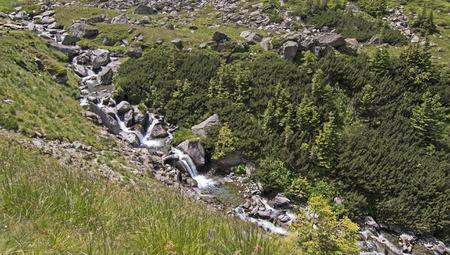 Small River among Carpathian Mountains, Roumania
