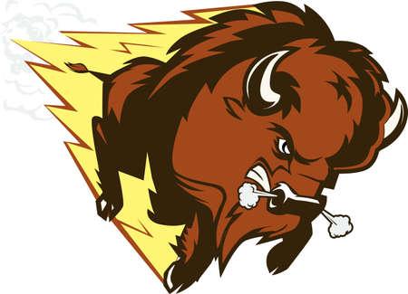 bison: Buffalo Thunder Illustration