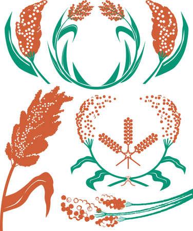 crop circle: Sorghum Collection