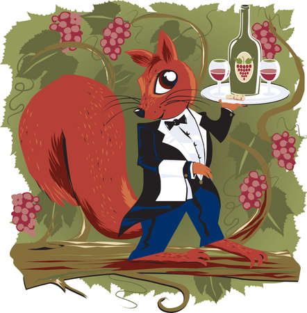 Vineyard Squirrel Stock Vector - 9886595