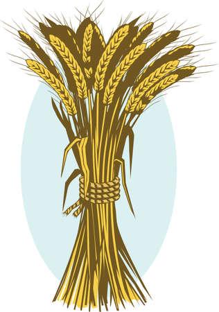 bushel: Wheat Bushel