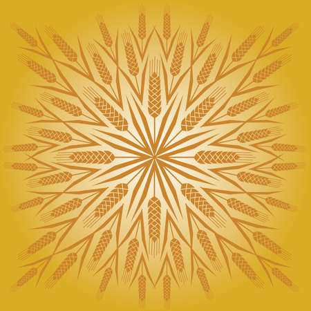 Wheat Sunburst Zdjęcie Seryjne - 9886589