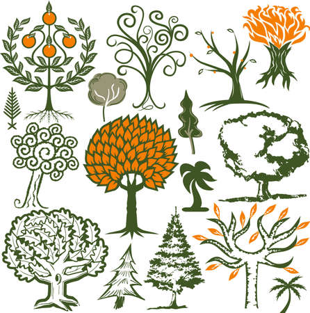 oranges: Tree Collection Illustration