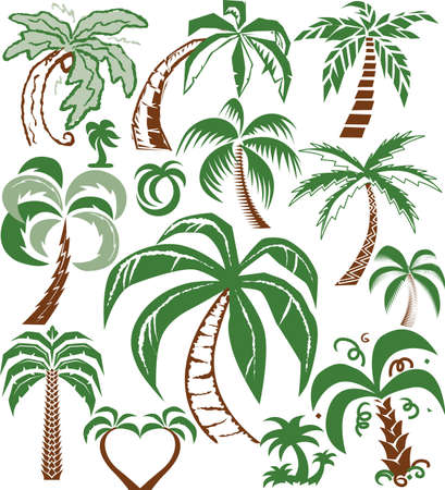 Palm Tree Collection Stock Vector - 10444286