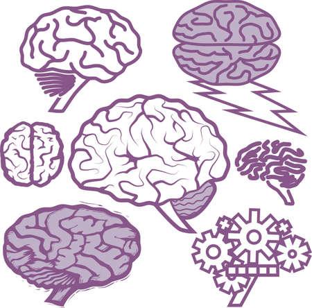 Brain Collection Illusztráció