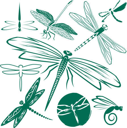 Dragonfly Collection Иллюстрация
