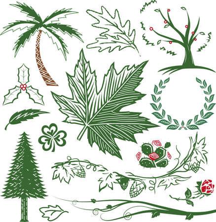 Greenery Sammlung Standard-Bild - 11324624