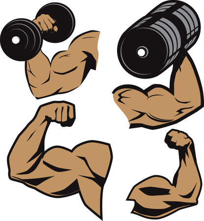 Weightlifter Arms Vector