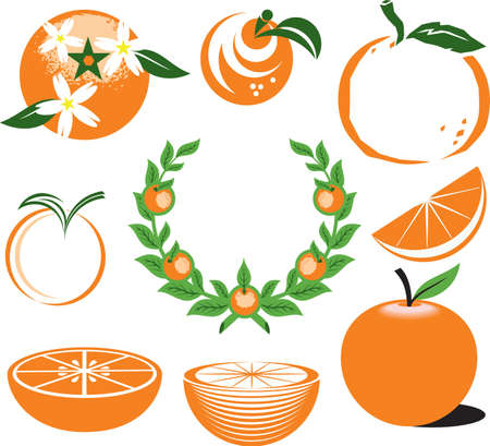 abstract art: Oranges Illustration