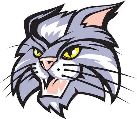 wildcat: Wildcat