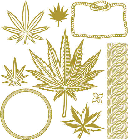 marijuana leaf: Hemp Collection Illustration