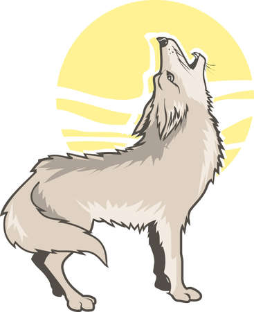 Howling Coyote Illustration