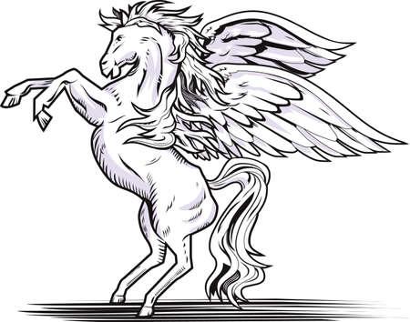 pegaso: La cría de Pegasus Vectores