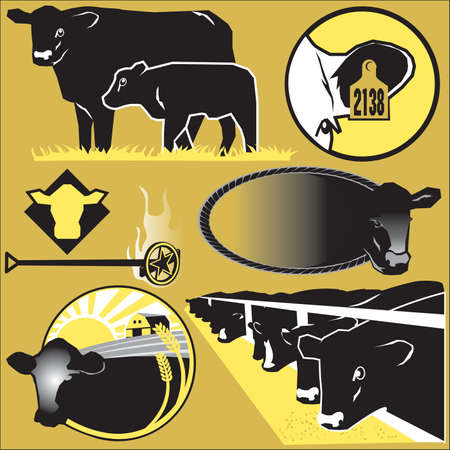 angus: Cattle Clip Art Illustration