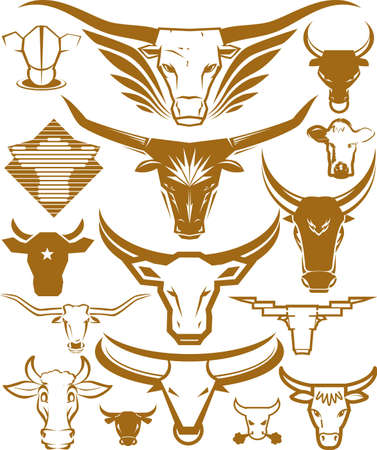 longhorn cattle: Bull Head Collection Illustration