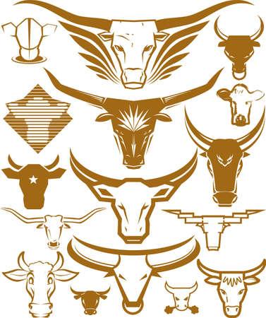 toro: Bull Testa Collection Vettoriali