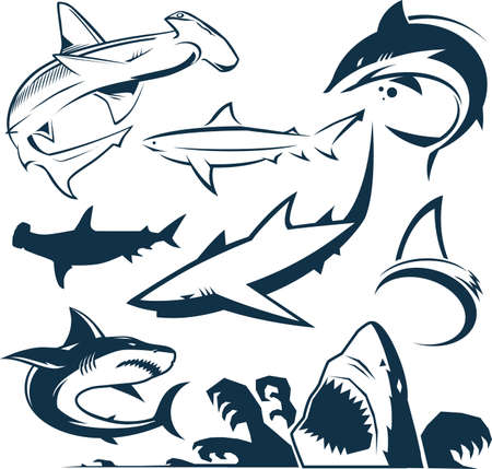 pez martillo: Colección de tiburón Vectores