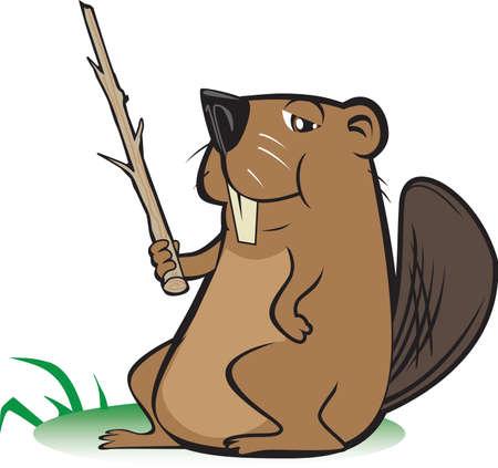 biber: Beaver mit Zeigestab