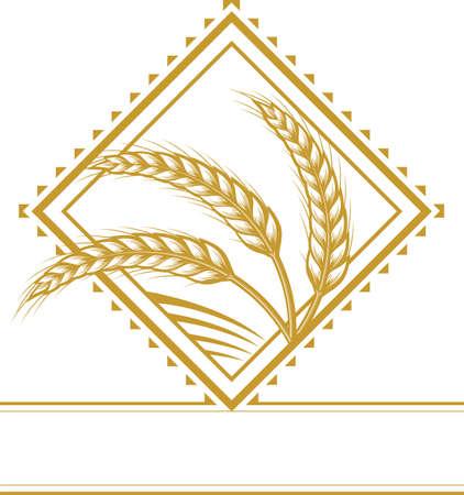 Wheat Diamond Stock Vector - 13179845
