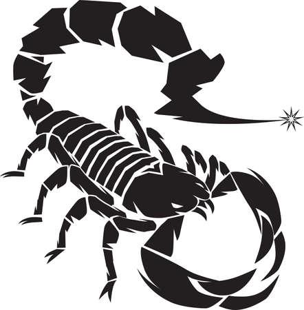 Escorpión Negro Foto de archivo - 13232342