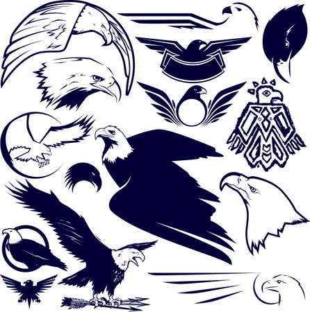 falcons: Eagle Collection Illustration