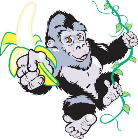 gorila: Un plátano Vectores