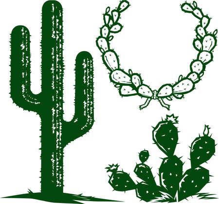 cactus desert: Cactus Collectie Stock Illustratie
