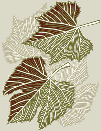 grape leaves: Grape Leaves Illustration